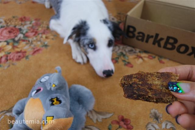 BarkBox, dog toys & dog treats
