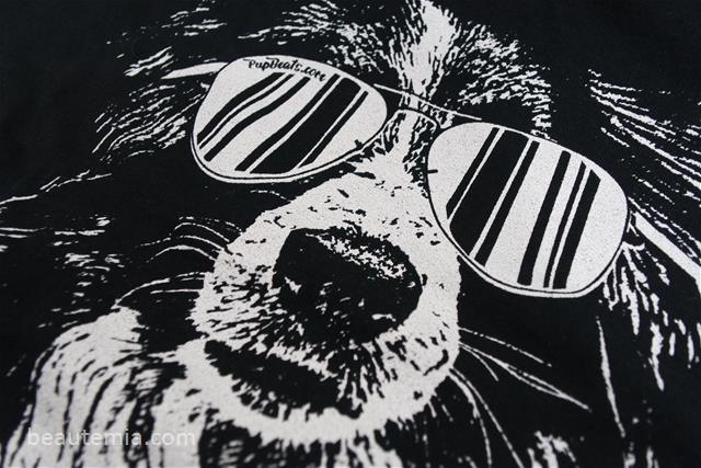 border collie, dog lovers, animal lovers & sunglasses