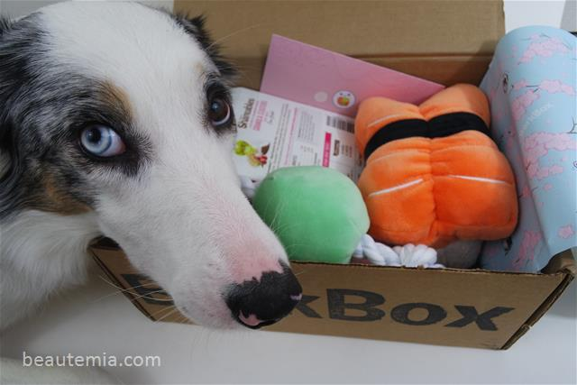 BarkBox, March, dog toys, dog treats & Spring