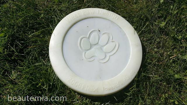 West Paw Design Zogoflex Zisc Frisbee, Kong dog toy, flying dog toy, Flexi dog leash, border collies & BarkBox