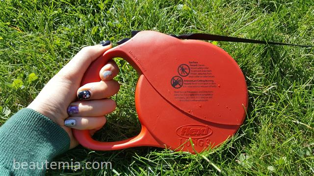 West Paw Design Zogoflex Zisc Frisbee, Kong dog toy, flying dog toy, Flexi dog leash, border collies & BarkBox