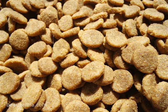 Natural Balance Review Gt Vegetarian Formula Dog Food