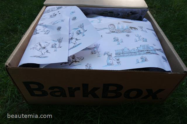 May Barkbox, border collies & monthly subscription box for large dogs