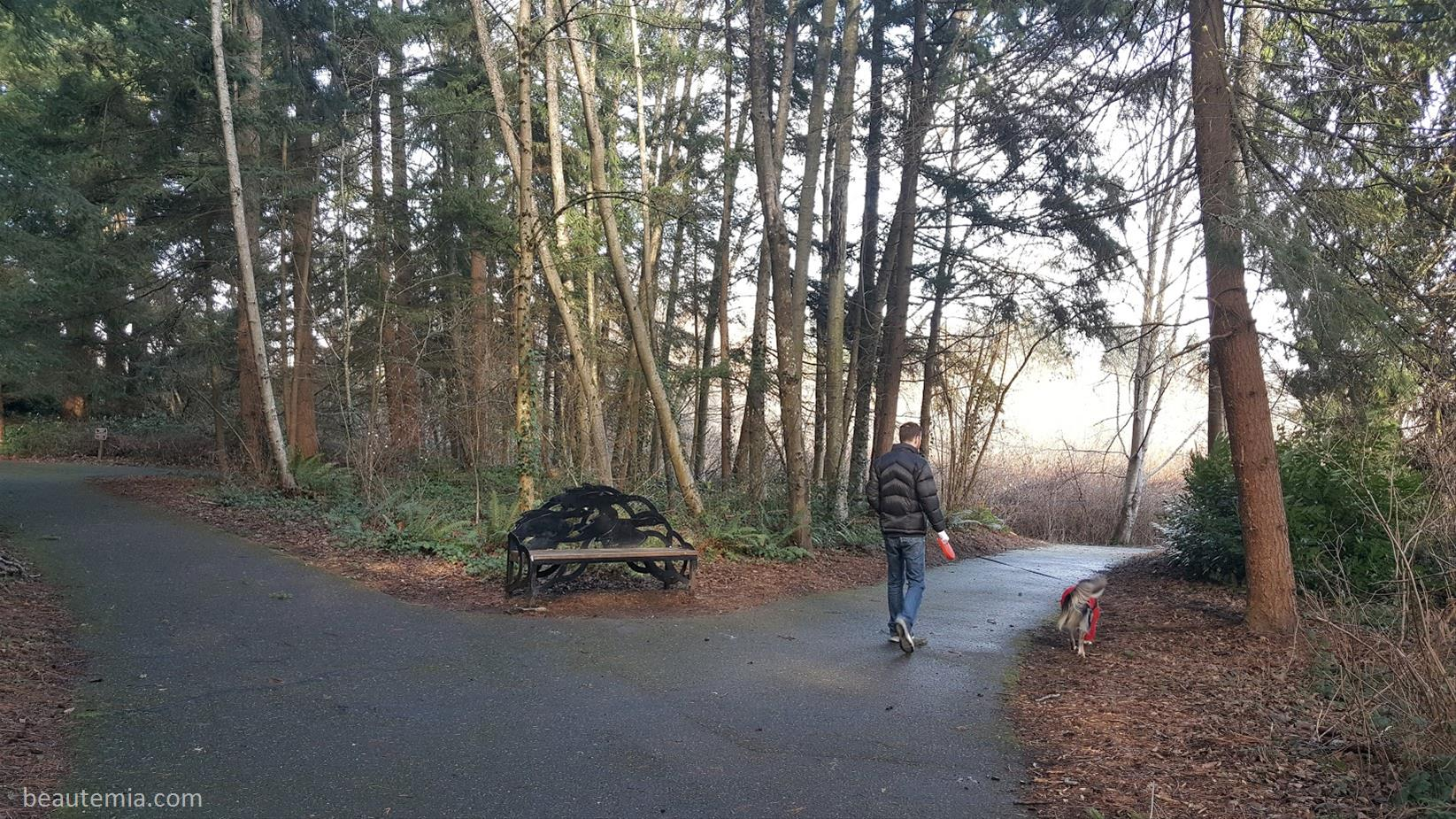Scriber Lake Park in Lynnwood WA